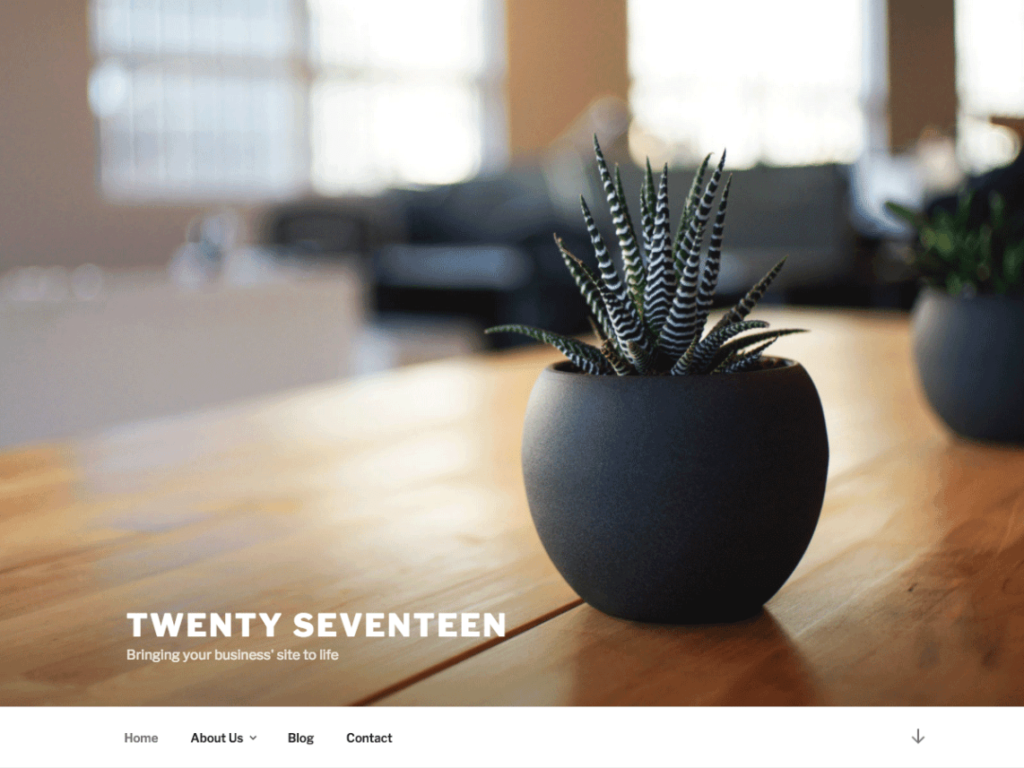 Twenty Seventeen brings your site to life with header video and immersive featured images.